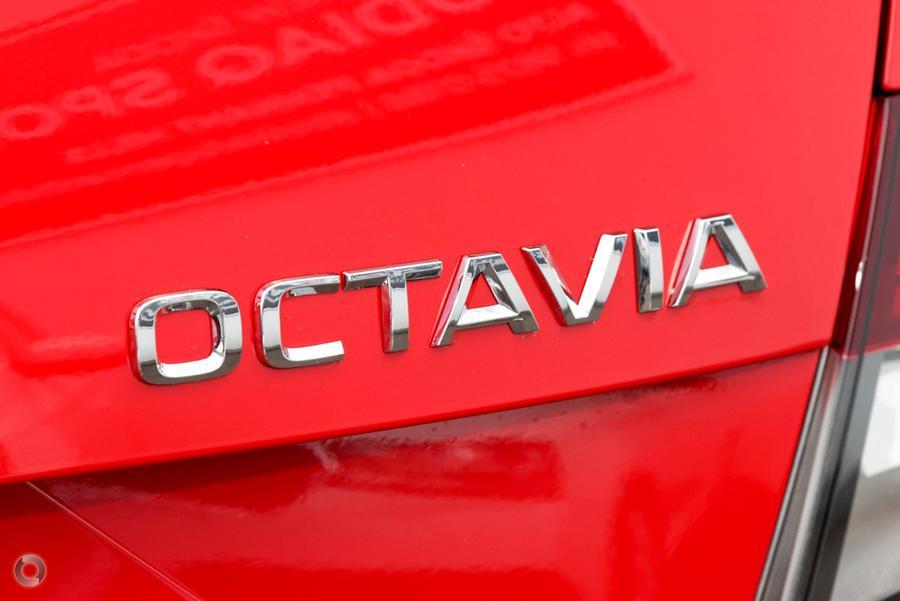 2019 SKODA Octavia 110TSI NE