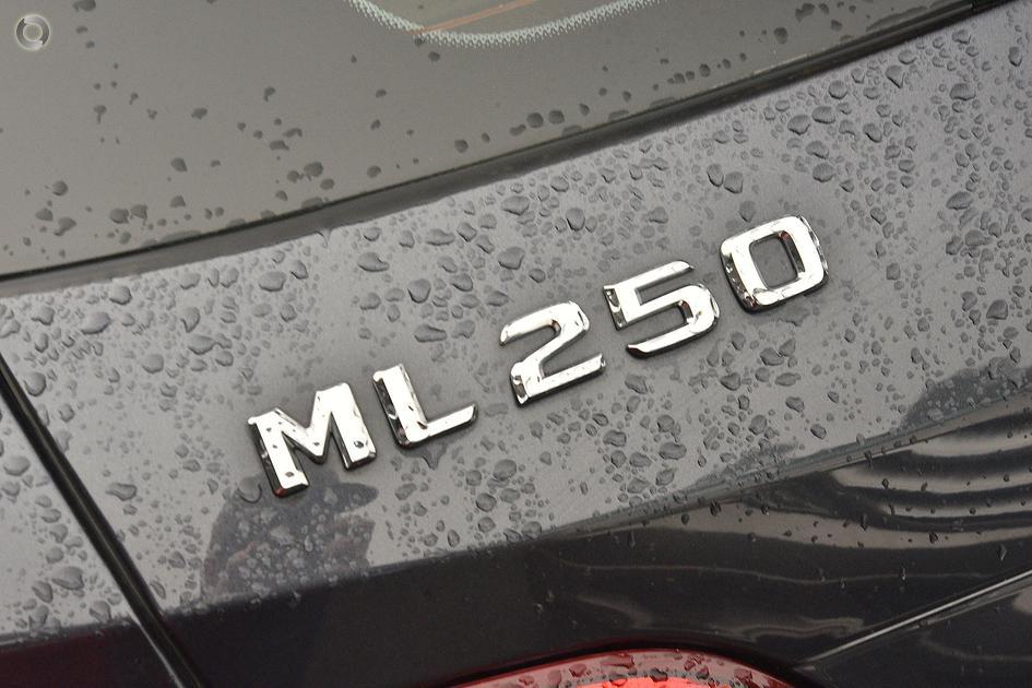 2015 Mercedes-Benz ML 250 Suv
